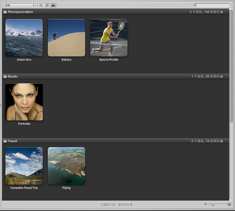 图。 项目视图中按文件夹分组的项目。