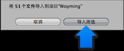 """图。 """"导入""""浏览器中的""""导入所选""""按钮。"""