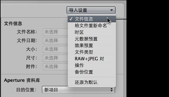 """图。 """"导入""""浏览器中的""""导入设置""""弹出式菜单。"""