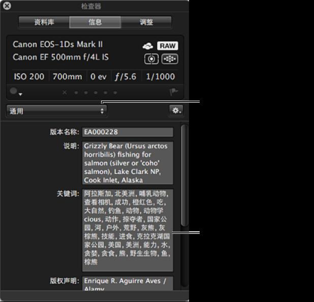 """图。 """"检查器""""HUD 的""""元数据""""面板显示""""元数据视图""""弹出式菜单中的选项。"""