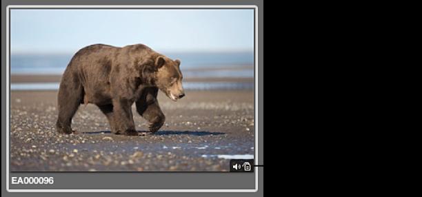 图。 此图像的标记指示图像具有音频附件。