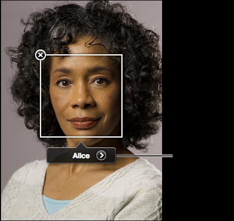 """图。 面孔标签中的""""显示面孔视图""""按钮。"""