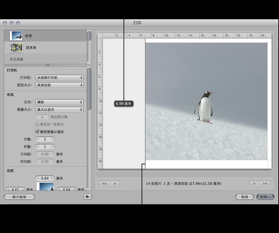 """图。 在""""打印""""对话框的""""预览""""区域中拖移边距来调整图像的大小。"""