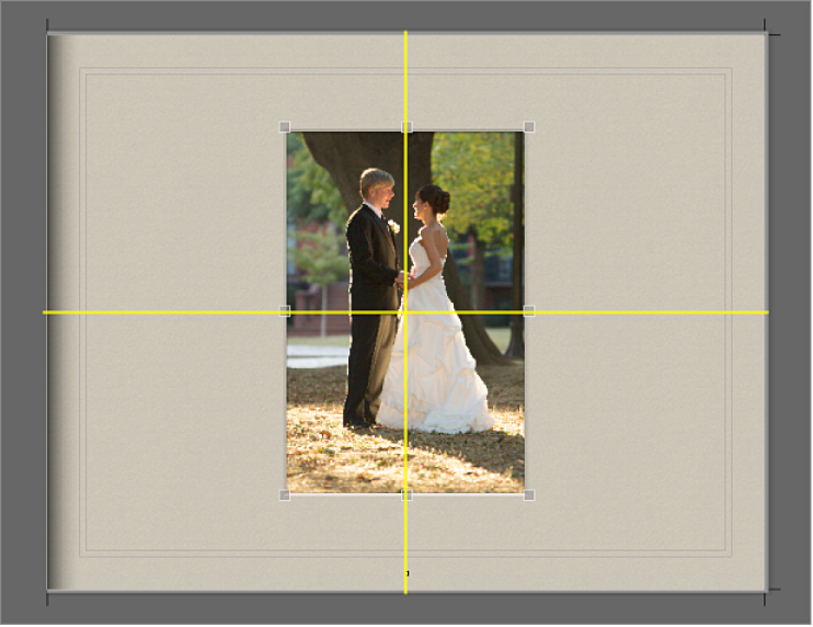 图。 黄色对齐参考线显示在页面中的图像上。