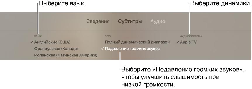 Экран воспроизведения с раскрытым меню «Аудио» и выбранным параметром «Подавление громких звуков»