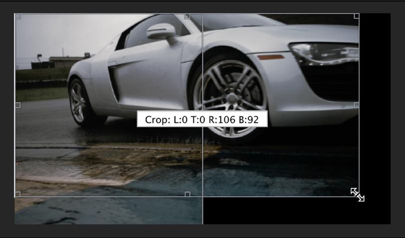 Vorschaubereich mit manuell beschnittenem Bild