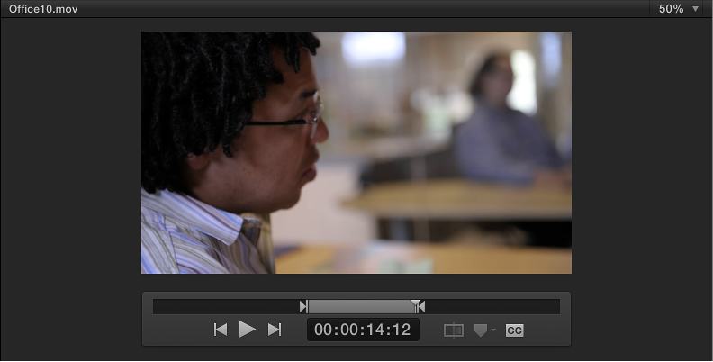 Preview area showing In and Out points marking range in the source clip