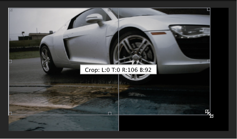 Preview area showing image being cropped manually