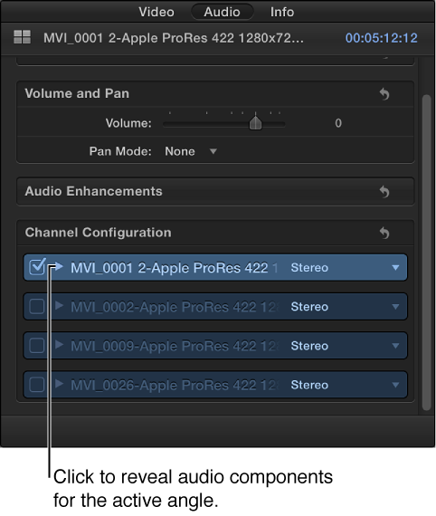 Channel Configuration section of Audio inspector showing audio components for active angle