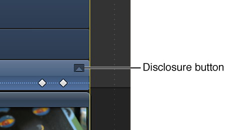 Disclosure button for effect in Video Animation Editor