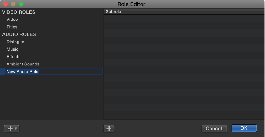 Newly created audio role shown in Role Editor window