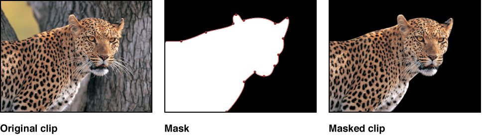 Diagram comparing the original image, the mask alpha channel, and the masked image