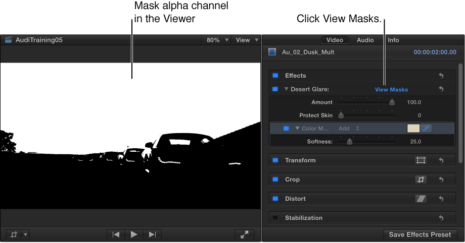 Viewer and Video inspector showing a mask alpha channel