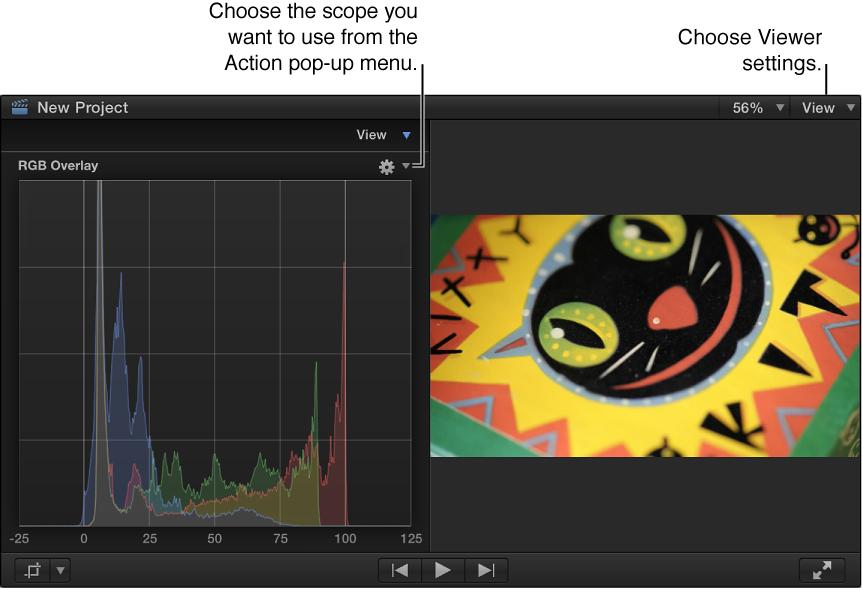 Viewer and RGB Overlay Histogram