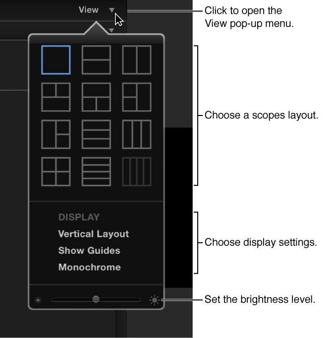 Video scopes display controls menu