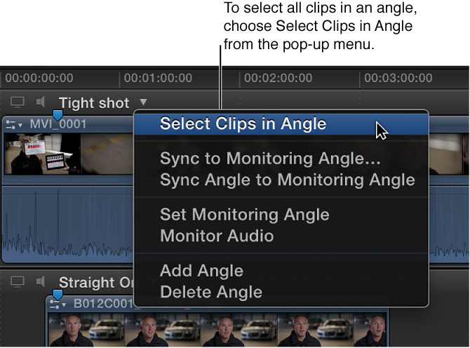Options in pop-up menu next to angle name in Angle Editor