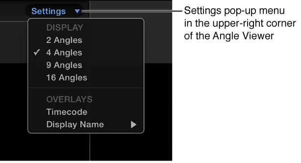 Settings pop-up menu in Angle Viewer