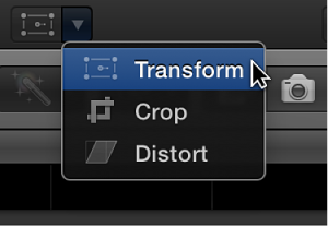Transform menu item for accessing Transform controls