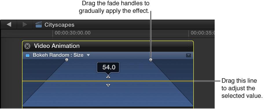 带有扩展区域的视频动画编辑器,显示特定的效果调整