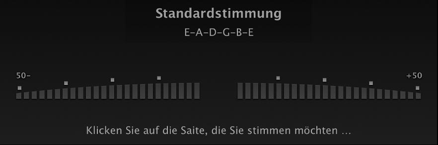 "Abbildung. Stimmgerät ""Instrument lernen""."