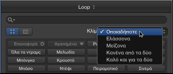 Εικόνα. Εμφάνιση του αναδυόμενου μενού «Κλίμακα» στην Περιήγηση loop.