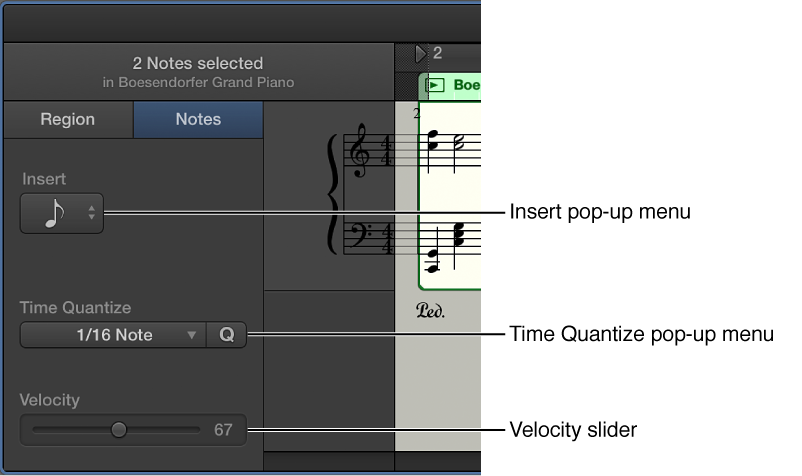Figure. Score Editor inspector in Notes mode, showing controls