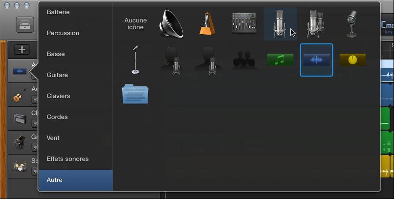 Figure. Sélection d'une icône de piste dans le menu contextuel Icône.