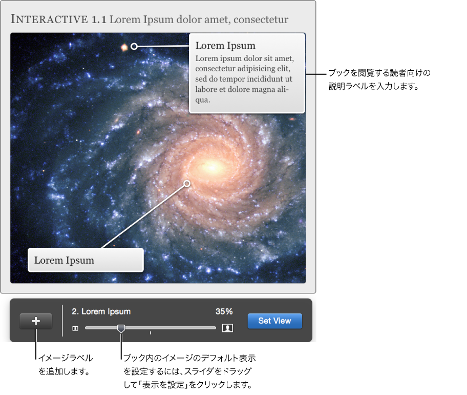 表示を調整するためのオーバーレイが表示されているインタラクティブイメージウィジェット