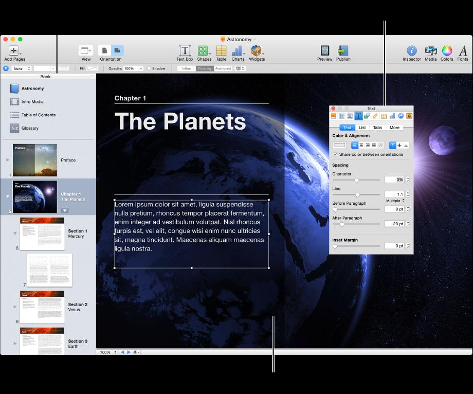 Cửa sổ chính hiển thị thanh bên, trang sách và Trình kiểm tra