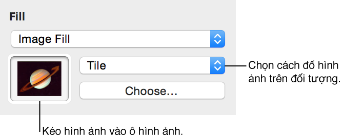 Các điều khiển cho tùy chọn Tô màu Hình ảnh trong trình kiểm tra Đồ họa