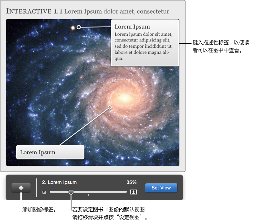 带有用于调整视图的叠层的交互图像 Widget