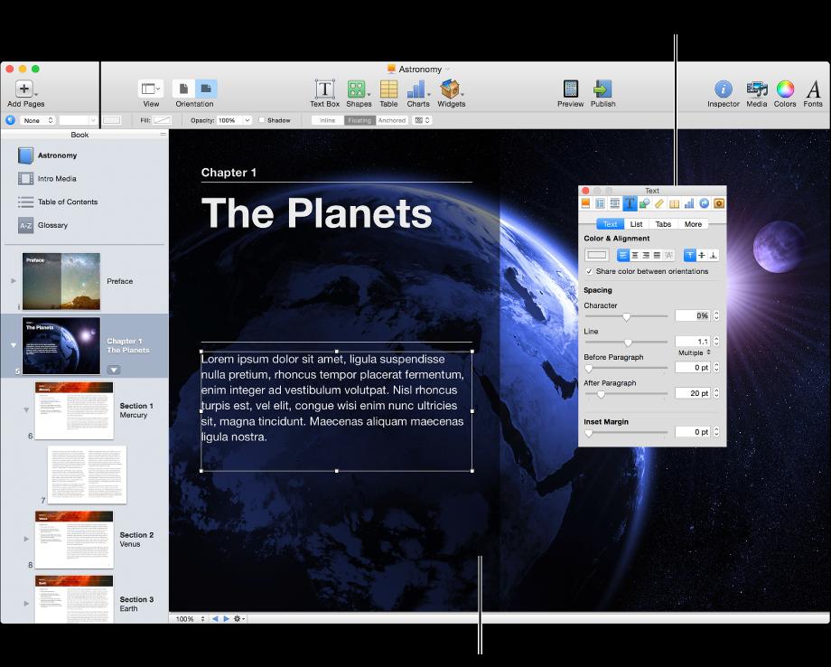 主視窗:顯示側邊欄、書籍頁面和「檢閱器」
