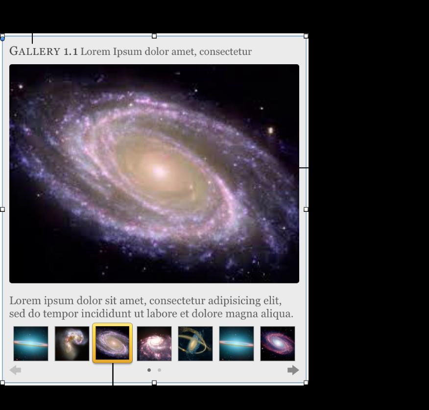 包含縮覽圖導覽影像的「圖庫」widget