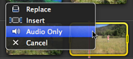 Image of Audio Only selected in the contextual menu