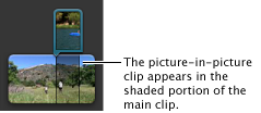 Image of a picture-in-picture clip in the Project browser.