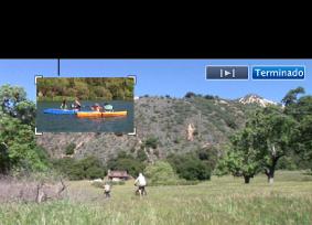 Imagem de uma janela de imagem na imagem no visualizador.