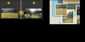Imagem de fotogramas fixos marcados com números laranja