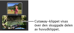 Ett cutaway-klipp i projektbläddraren.
