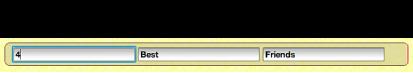 暫存區文字列中現用文字欄位的影像。
