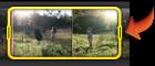 所選視訊剪輯片段之控制點的影像