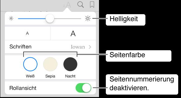 Das Menü für die Darstellung mit den Optionen für Helligkeit, Seitenfarbe und Blättern.