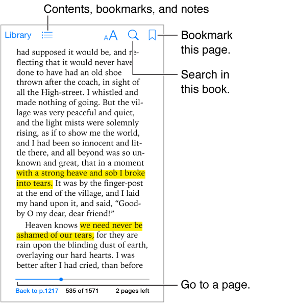 A page of a open book. Across the top are, from left-to-right, the Library button, the table of contents button, the appearance button, the search button, and the add bookmark button. At the bottom is the page chooser control.