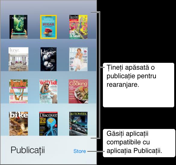 Etajera Publicații pentru aplicații. Țineți apăsată o publicație pentru a rearanja etajera. Apăsați butonul Store, în colțul din dreapta jos, pentru a găsi aplicații compatibile cu Publicații.