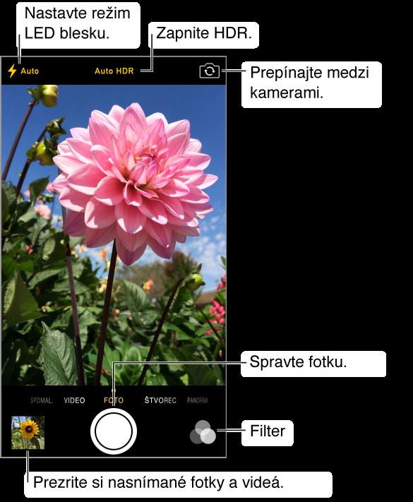 Kamera v režime fotoaparát. Medzi režimami môžete prepínať potiahnutím obrazovky doprava alebo doľava. Vo vrchnej časti sú zobrazené tlačidlá pre režim blesku, HDR a prepínanie medzi kamerami. Ak si chcete prezerať svoje fotky a videá, klepnite na miniatúru v ľavom dolnom rohu. Na spodku v strede sa nachádza tlačidlo spúšte. Vpravo dole sa nachádza tlačidlo Filter.