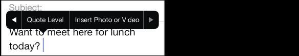 """Sestavljanje sporočila. Tapnite polje »Cc/BCC«, če želite spremeniti naslove v poljih »From«, »CC« ali »BCC«. Tapnite točko vnosa, če si želite ogledati slogovni meni, in nato tapnite »Insert Photo« ali »Video«, če želite sporočilu priložiti element. Če želite spremeniti podpis """"Sent from my iPhone"""", pojdite v Settings > Mail, Contacts, Calendars."""