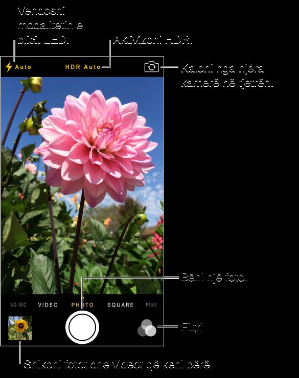 Camera në modalitetin Photo. Rrëshqisni ekranin majtas ose djathtas për të kaluar nga njëri modalitet në tjetrin. Butonat e blicit, HDR dhe Switch Camera shfaqen në krye. Prekni miniaturën në pjesën e poshtme majtas për të parë fotot dhe videot që keni realizuar. Butoni i diafragmës ndodhet poshtë në qendër. Butoni i filtrimit ndodhet poshtë djathtas.