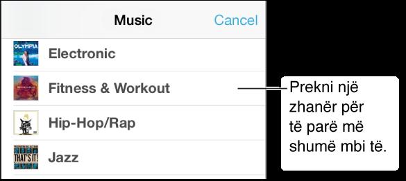 Pjesë e ekranit të Music Genres që tregon një nënset me zhanre me një shenjë kontrolli pranë Fitness & Workout.