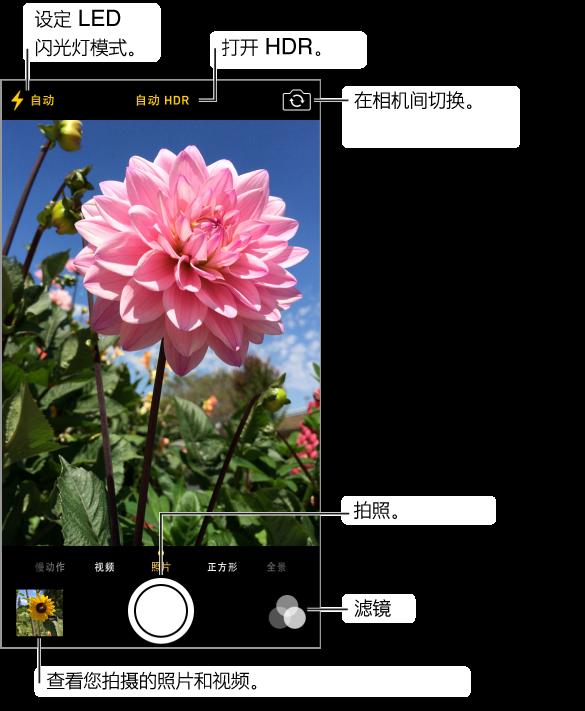 """""""照片""""模式的相机。 向左或向右滑动屏幕以在模式间切换。 闪光灯模式、""""HDR""""和""""切换相机""""按钮出现在顶部。 轻按左下角的缩略图以查看拍摄的照片和视频。 """"快门""""按钮位于底部中央。 """"滤镜""""按钮位于右下角。"""