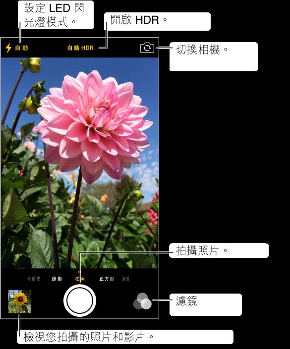 「照片」模式中的「相機」。 向左或向右滑動螢幕來切換模式。 閃光燈模式、HDR 和「切換相機」按鈕會顯示在最上方。 點一下左下方的縮覽圖可檢視您拍攝過的照片和影片。 快門按鈕在底部中央。 濾鏡按鈕在右下方。