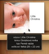 Obrázek s informacemi o názvu, tématu, typu a formátu zobrazenými po přesunutí kurzoru nad album